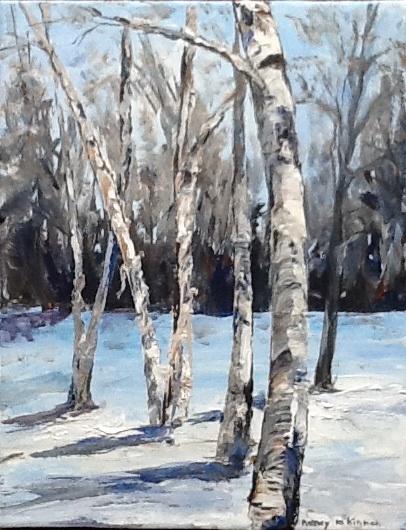 magnificent birch trees